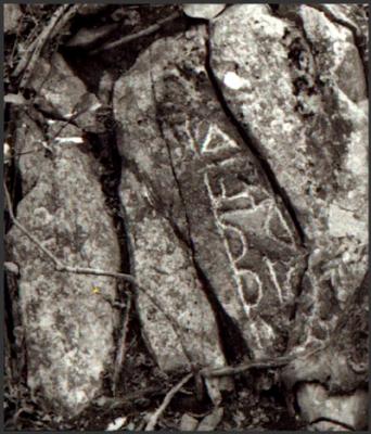 long-lost-taino-petroglyph-discovered-stjohn