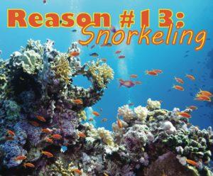 13 Best Snorkeling