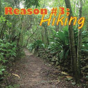 3 Best Hiking Trails